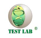 TEST LAB – Медицинская лаборатория